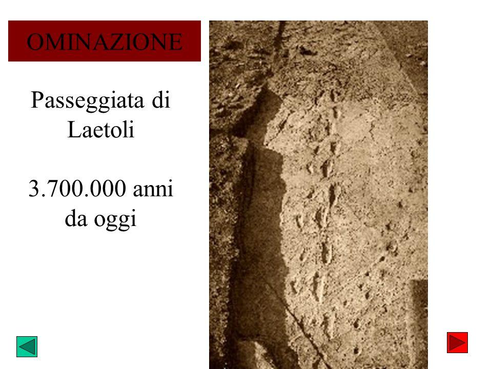 Passeggiata di Laetoli 3.700.000 anni da oggi