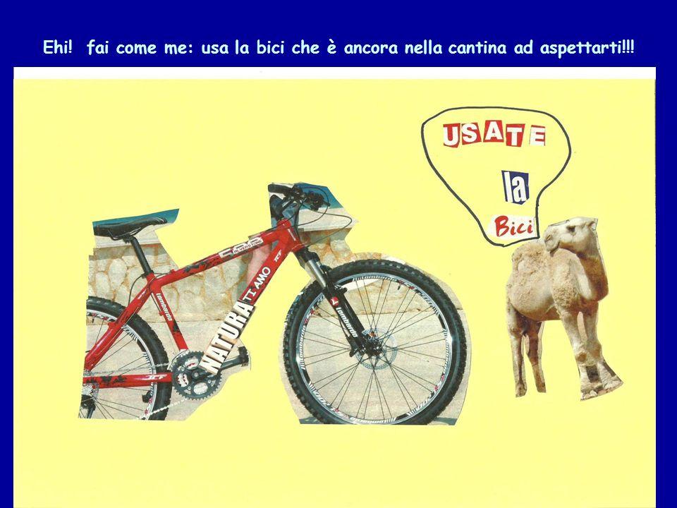 Ehi! fai come me: usa la bici che è ancora nella cantina ad aspettarti!!!