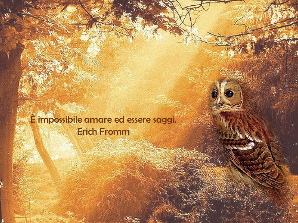 È impossibile amare ed essere saggi. Erich Fromm