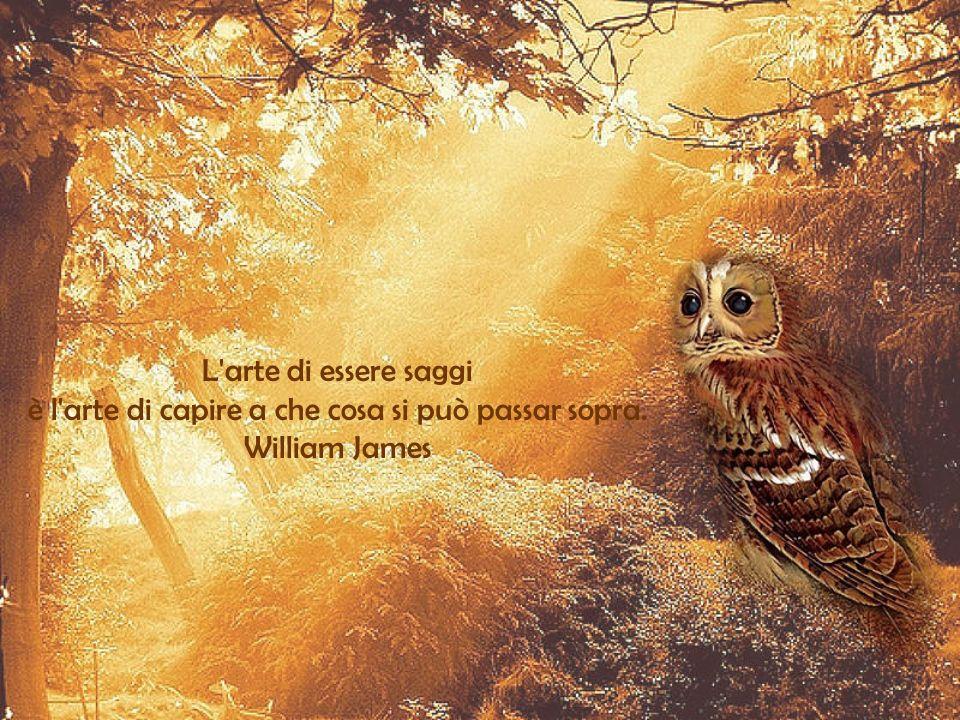 è l arte di capire a che cosa si può passar sopra. William James