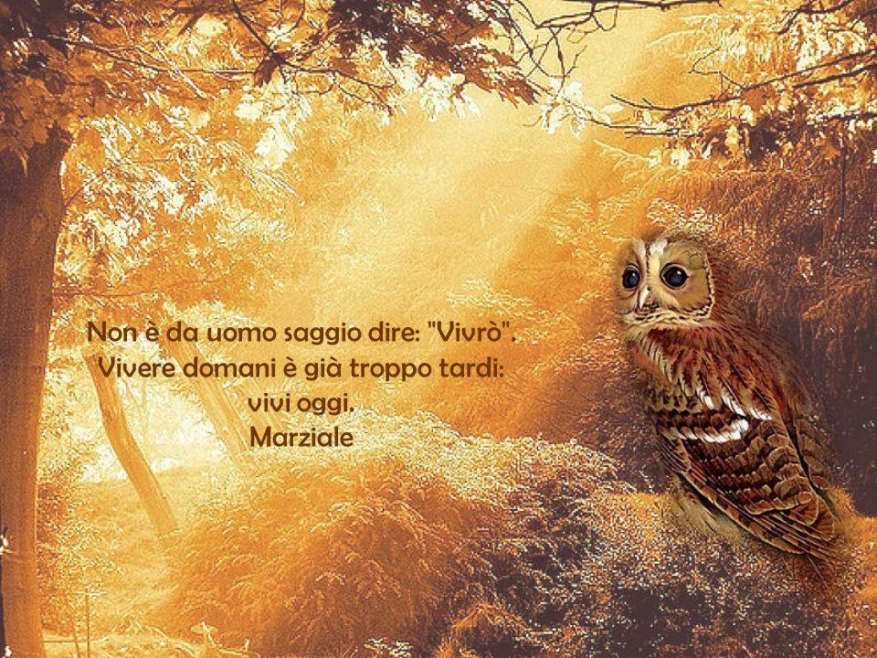 Non è da uomo saggio dire: Vivrò . Vivere domani è già troppo tardi: