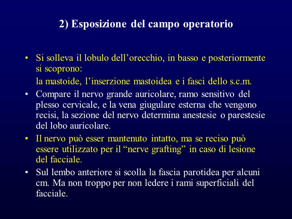2) Esposizione del campo operatorio