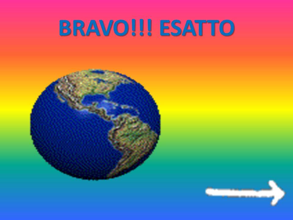 BRAVO!!! ESATTO
