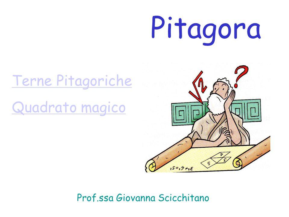 Prof.ssa Giovanna Scicchitano