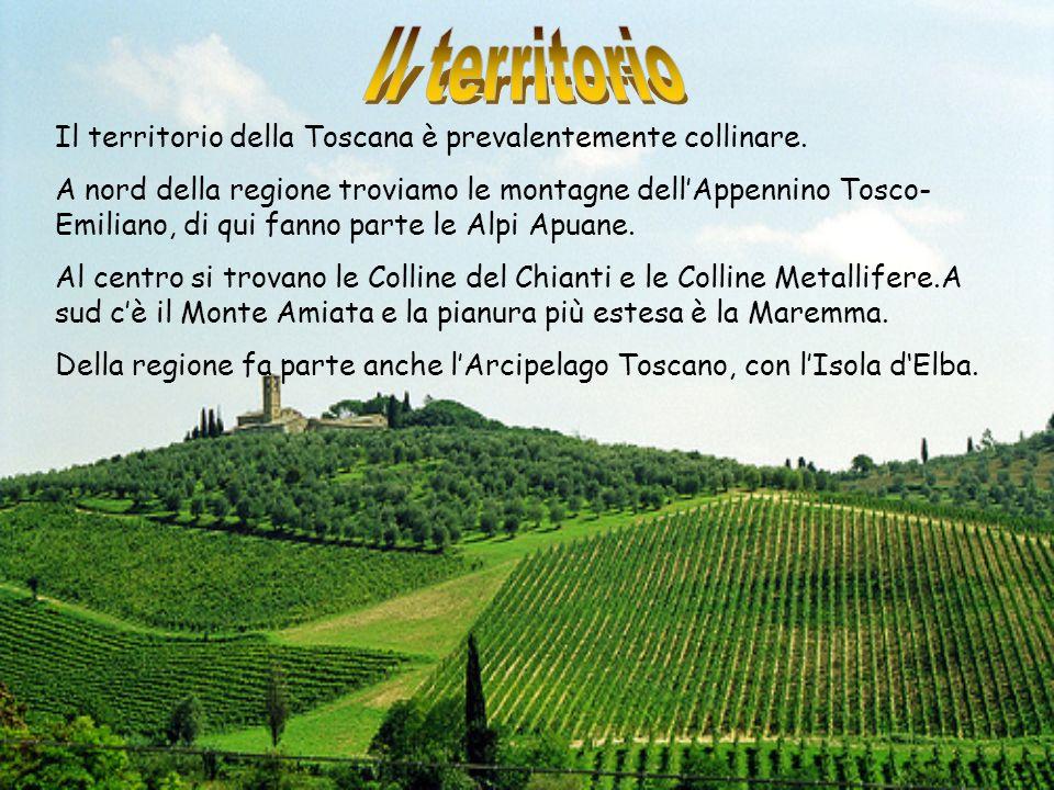 Il territorio Il territorio della Toscana è prevalentemente collinare.