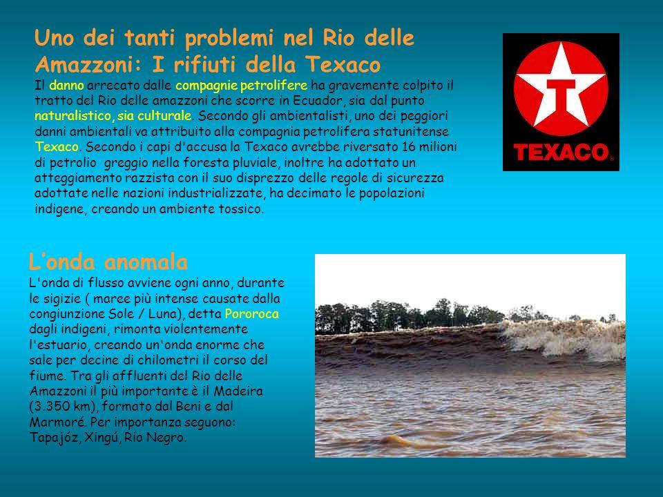 Uno dei tanti problemi nel Rio delle Amazzoni: I rifiuti della Texaco