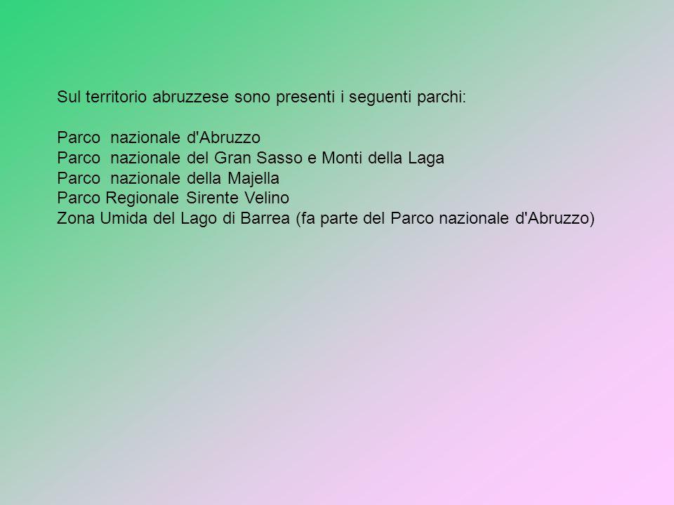 Sul territorio abruzzese sono presenti i seguenti parchi: