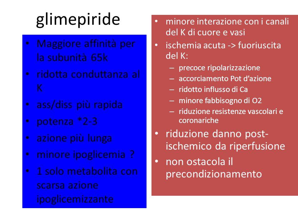 glimepiride Maggiore affinità per la subunità 65k