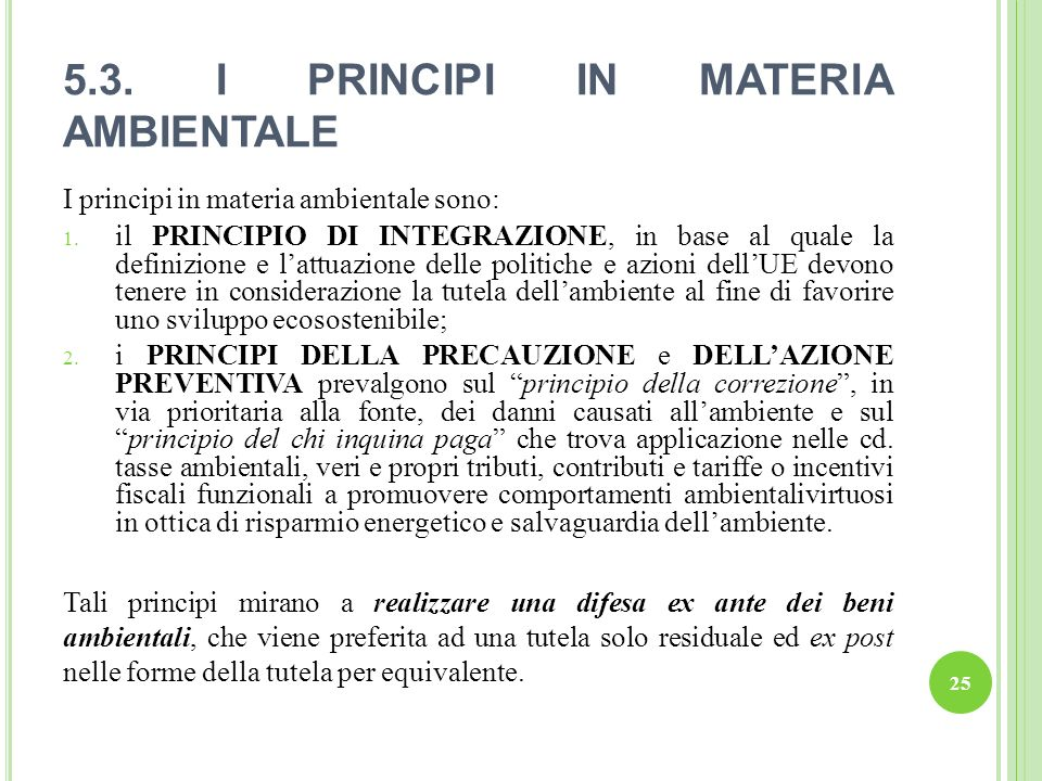 5.3. I PRINCIPI IN MATERIA AMBIENTALE
