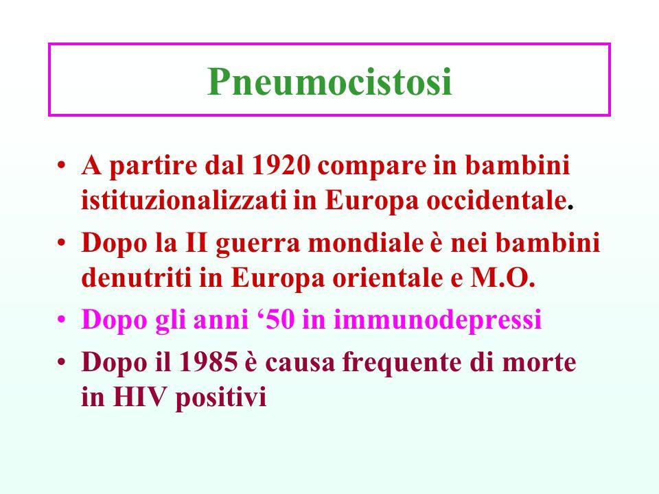 Pneumocistosi A partire dal 1920 compare in bambini istituzionalizzati in Europa occidentale.
