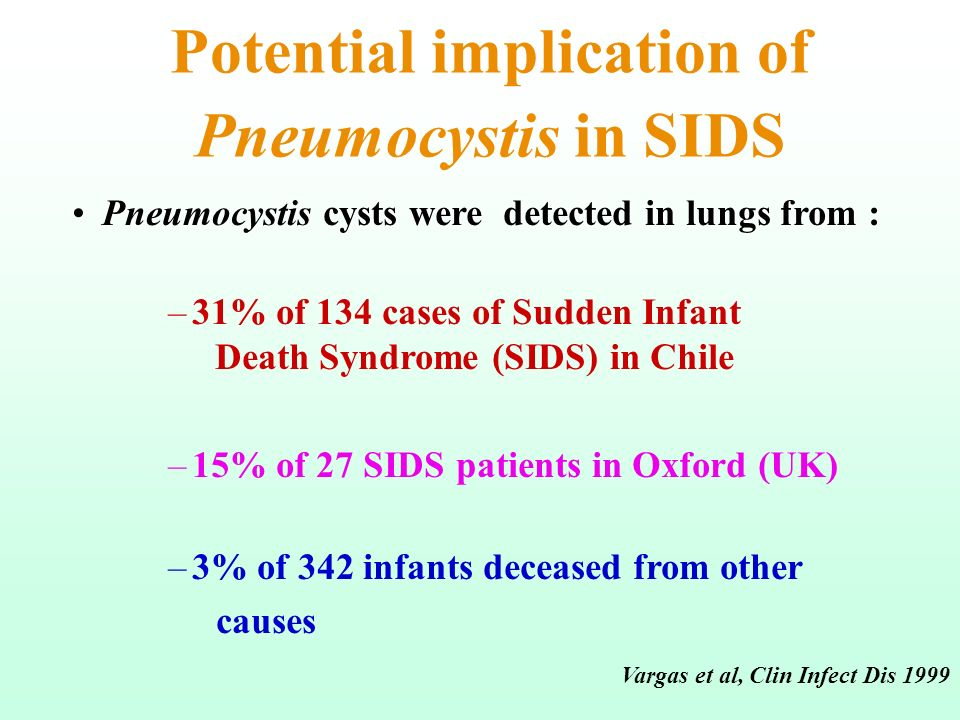 Potential implication of Pneumocystis in SIDS