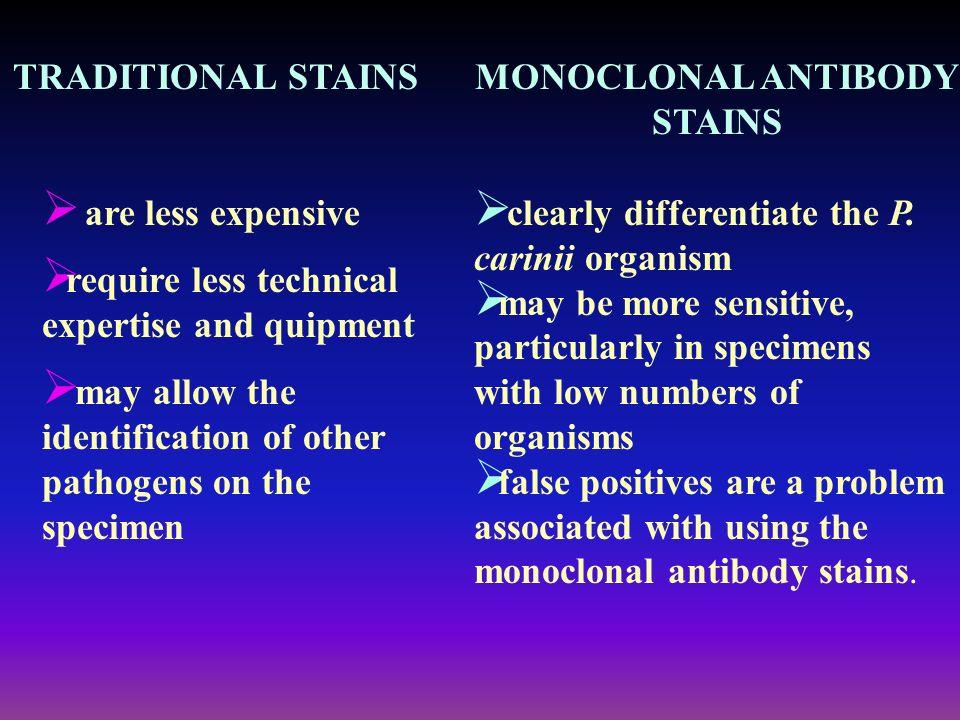 MONOCLONAL ANTIBODY STAINS