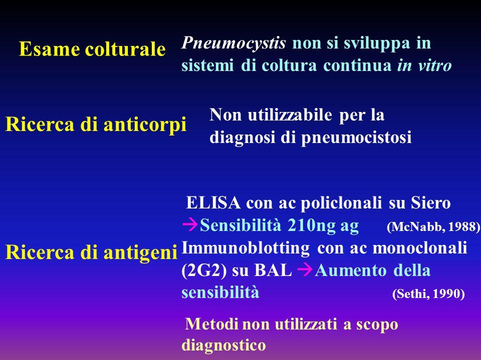 Esame colturale Ricerca di anticorpi Ricerca di antigeni
