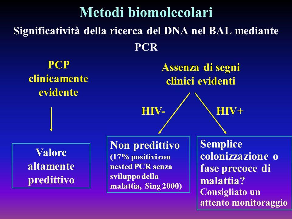 Metodi biomolecolari Significatività della ricerca del DNA nel BAL mediante PCR