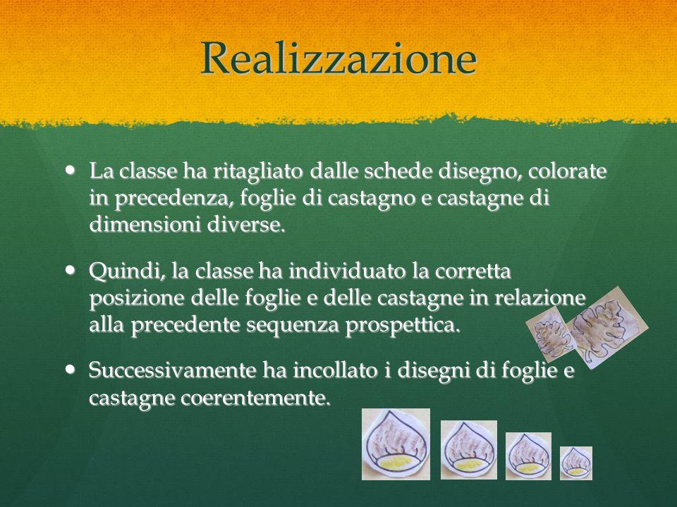 Realizzazione La classe ha ritagliato dalle schede disegno, colorate in precedenza, foglie di castagno e castagne di dimensioni diverse.