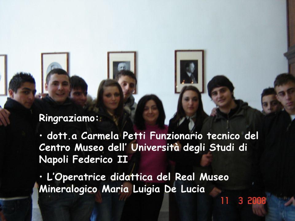 Ringraziamo: dott.a Carmela Petti Funzionario tecnico del Centro Museo dell' Università degli Studi di Napoli Federico II.