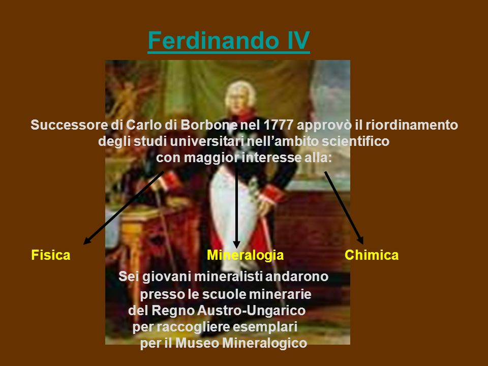 Ferdinando IV Successore di Carlo di Borbone nel 1777 approvò il riordinamento. degli studi universitari nell'ambito scientifico.