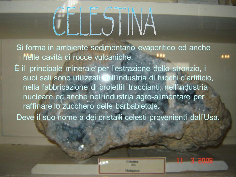 CELESTINA Si forma in ambiente sedimentario evaporitico ed anche nelle cavità di rocce vulcaniche.