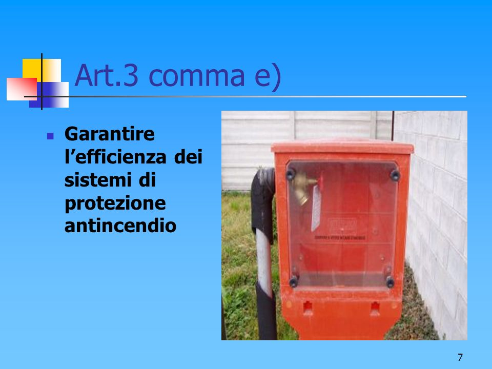 Art.3 comma e) Garantire l'efficienza dei sistemi di protezione antincendio