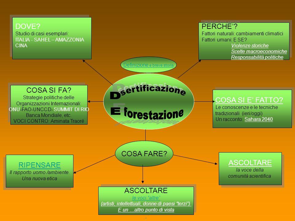 sertificazione forestazione DOVE PERCHE' COSA SI FA
