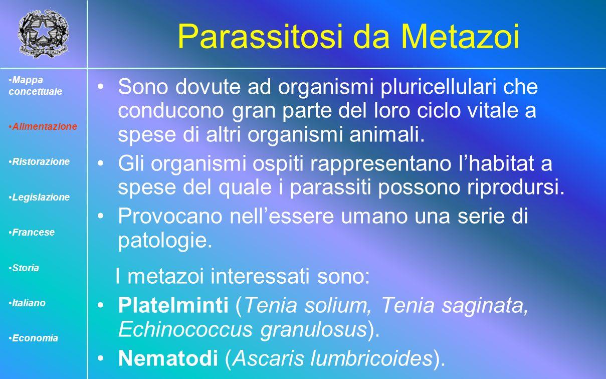 Parassitosi da Metazoi