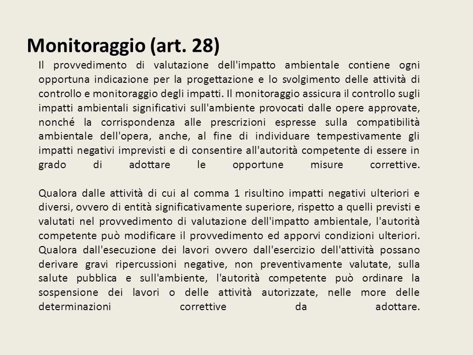 Monitoraggio (art. 28)