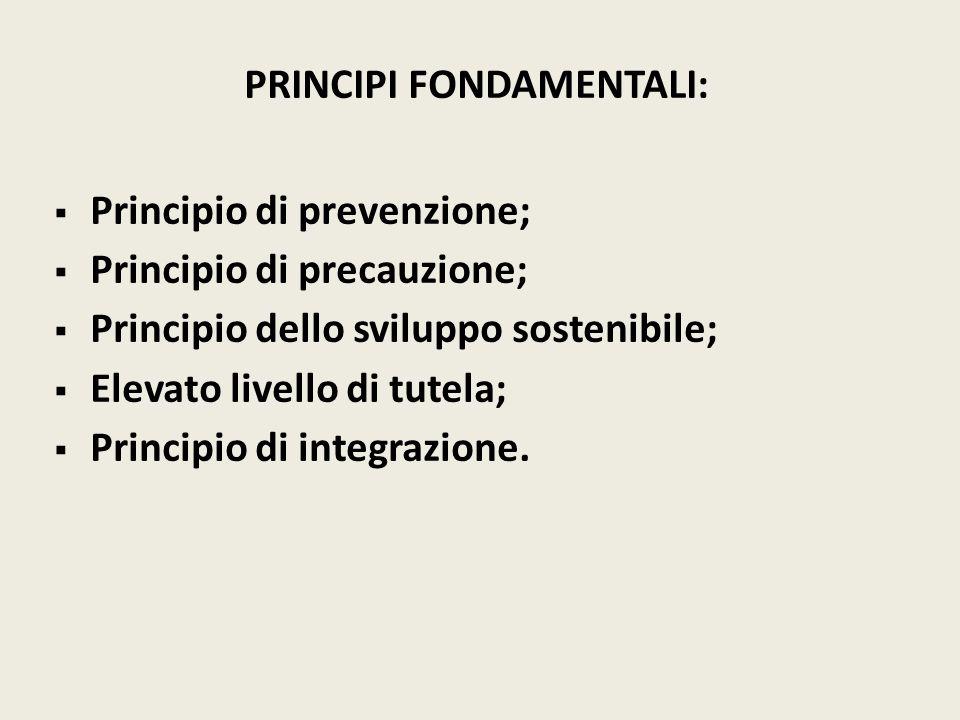 PRINCIPI FONDAMENTALI: