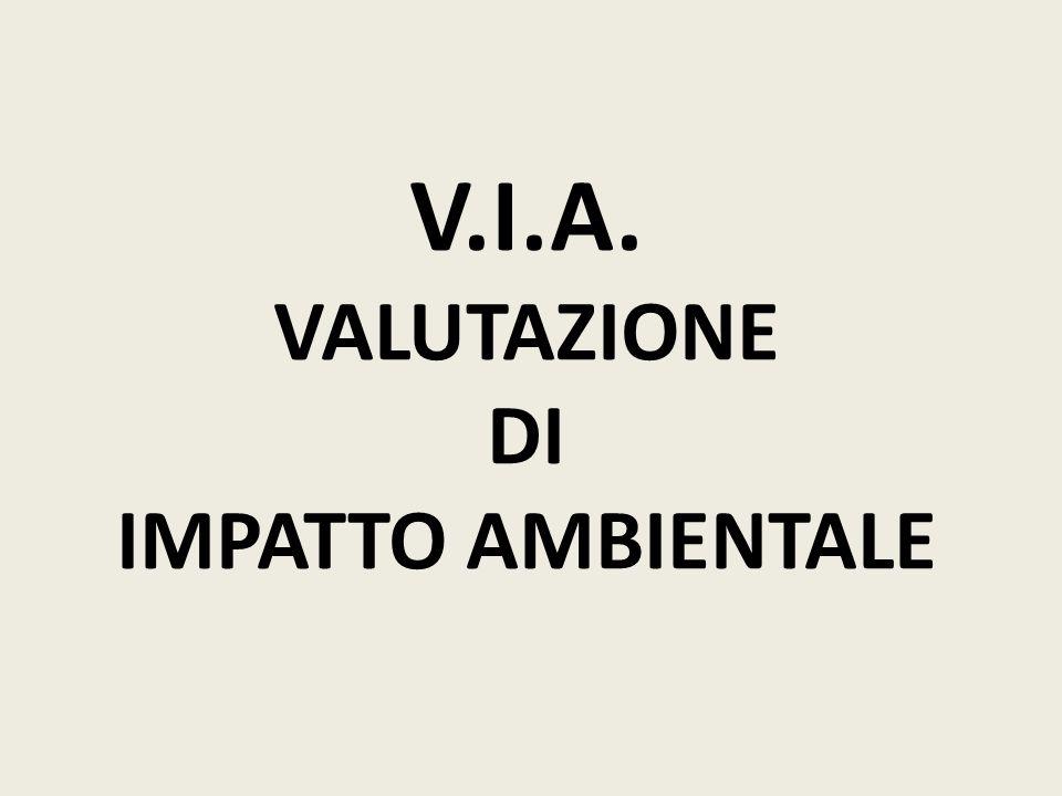 V.I.A. VALUTAZIONE DI IMPATTO AMBIENTALE