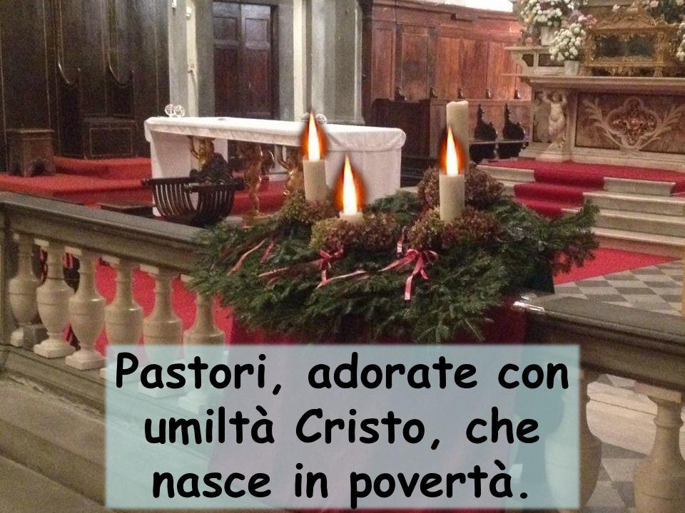 Pastori, adorate con umiltà Cristo, che nasce in povertà.