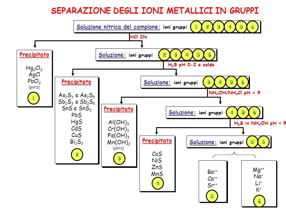 SEPARAZIONE DEGLI IONI METALLICI IN GRUPPI