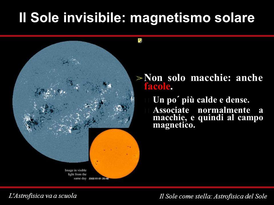 Il Sole invisibile: magnetismo solare