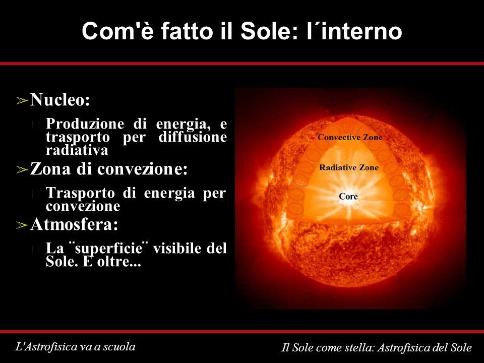 Com è fatto il Sole: l´interno
