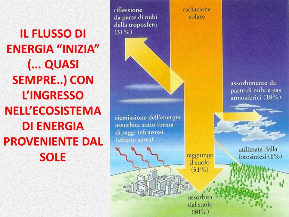 IL FLUSSO DI ENERGIA INIZIA (. QUASI SEMPRE