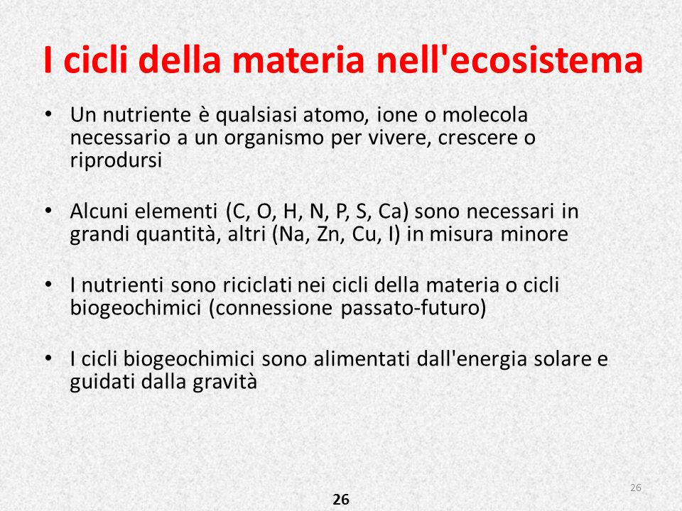I cicli della materia nell ecosistema