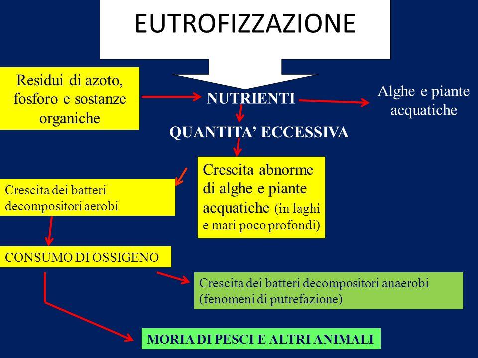 EUTROFIZZAZIONE Residui di azoto, fosforo e sostanze organiche