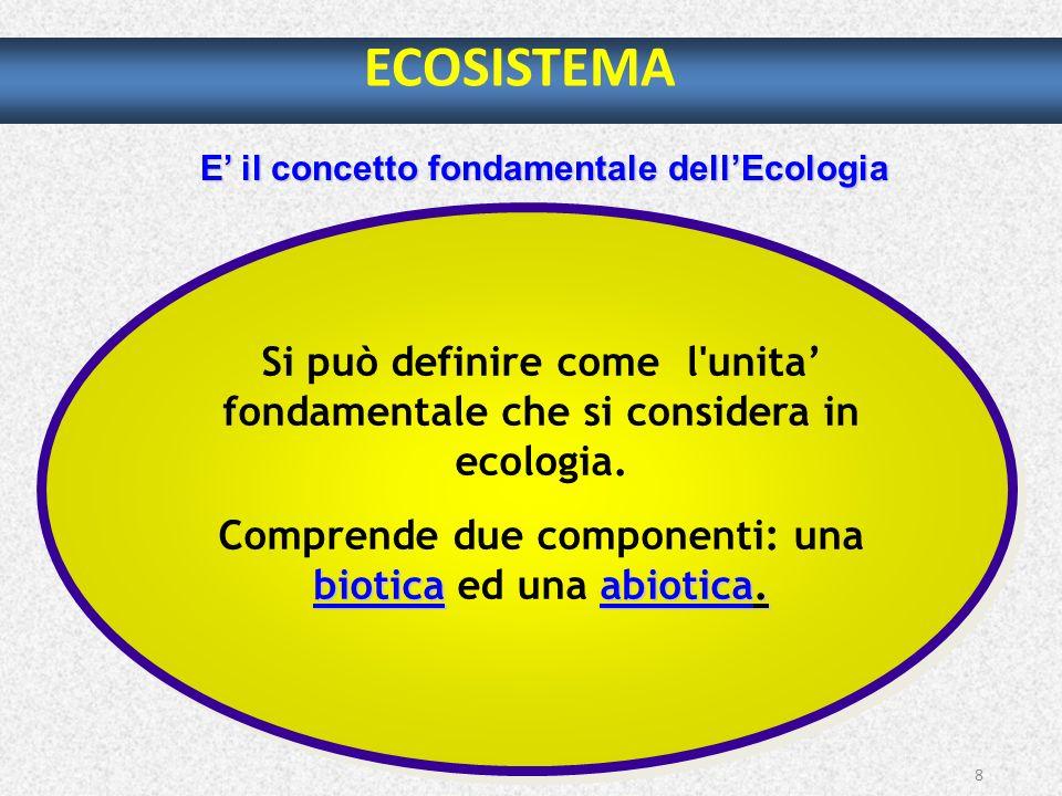 E' il concetto fondamentale dell'Ecologia