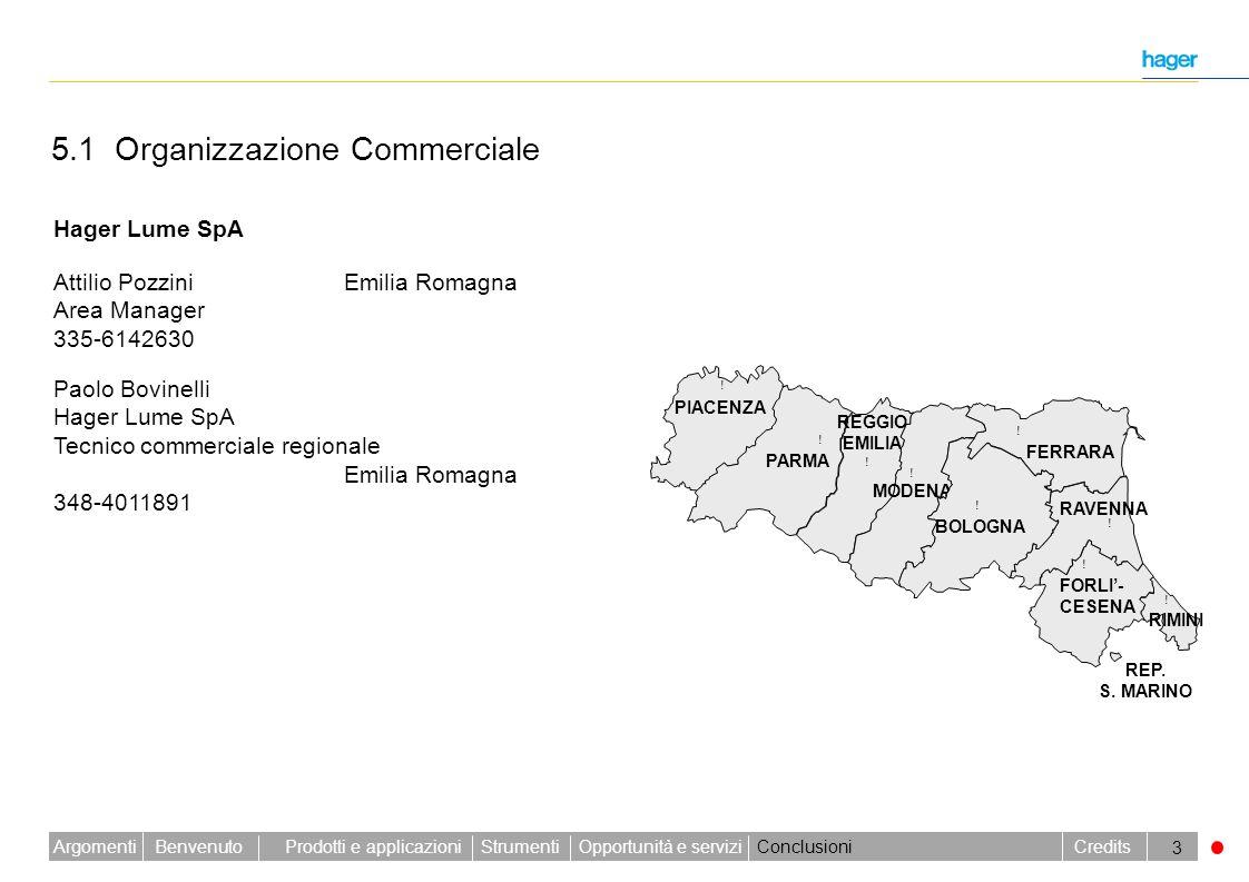 5.1 Organizzazione Commerciale
