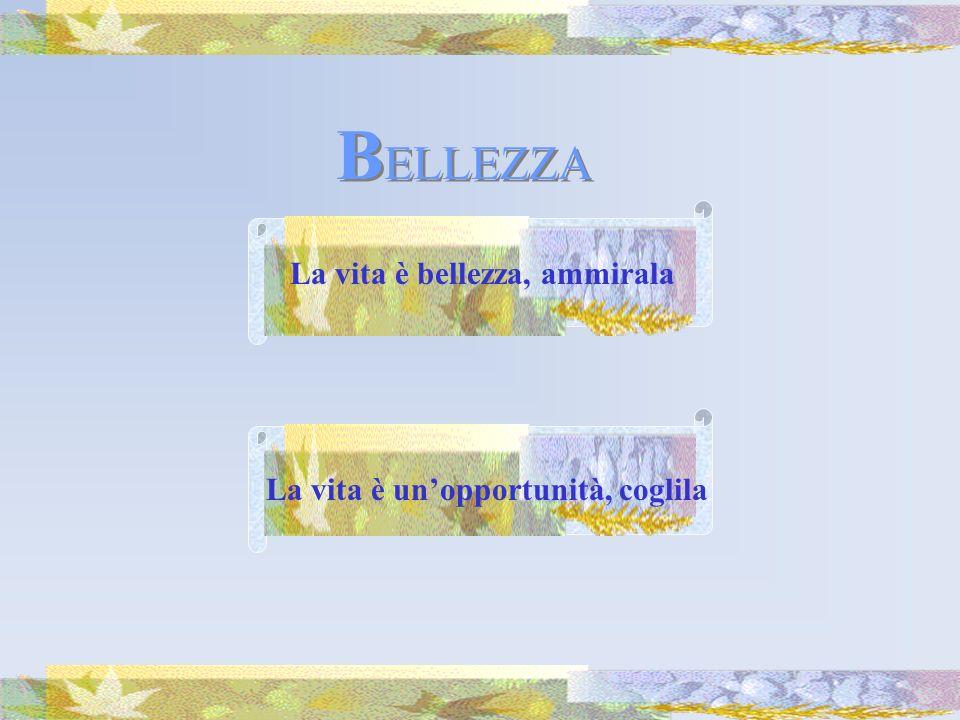 BELLEZZA La vita è bellezza, ammirala