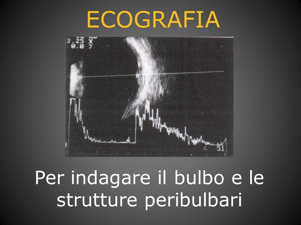 Per indagare il bulbo e le strutture peribulbari