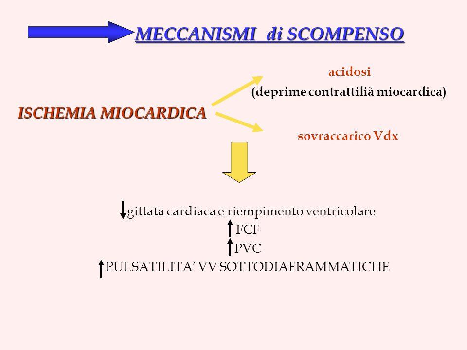 MECCANISMI di SCOMPENSO