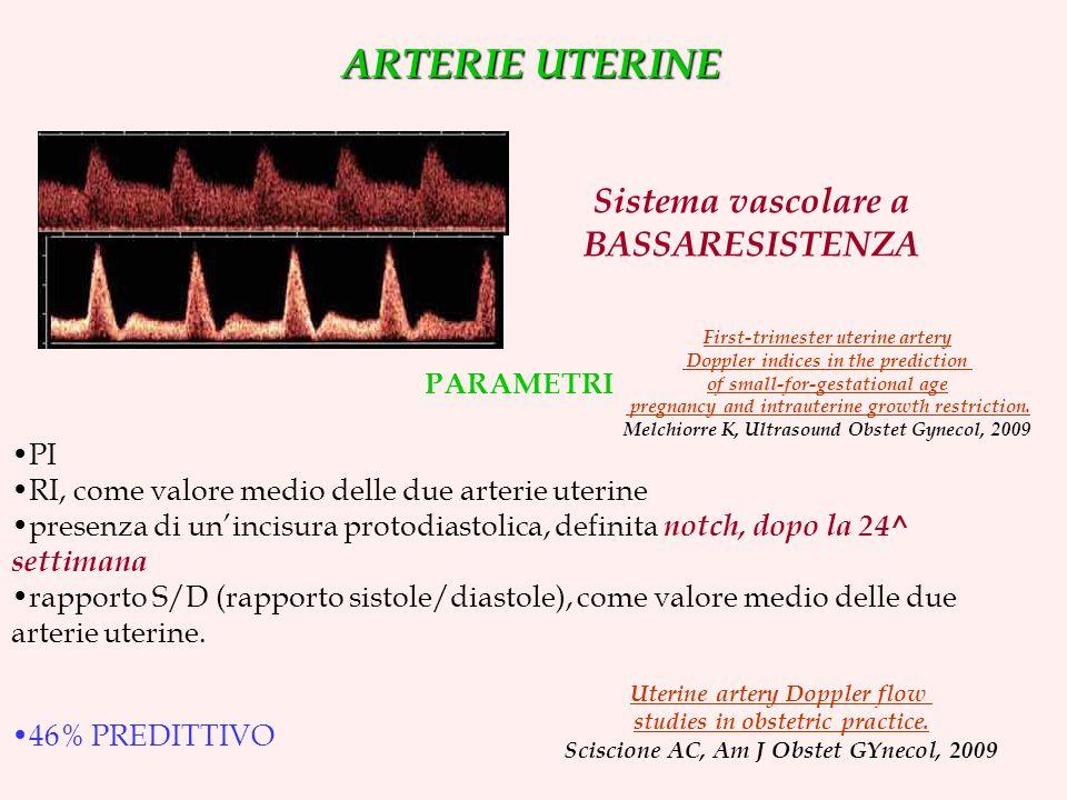 Sistema vascolare a BASSARESISTENZA