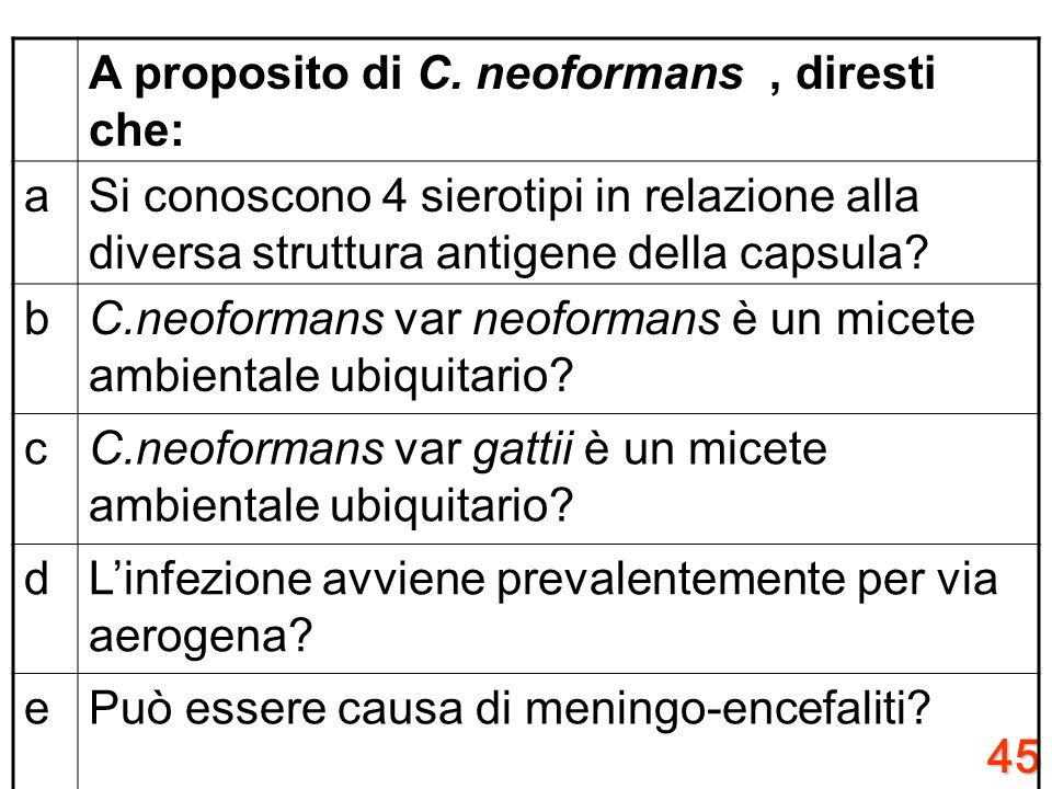 A proposito di C. neoformans , diresti che: