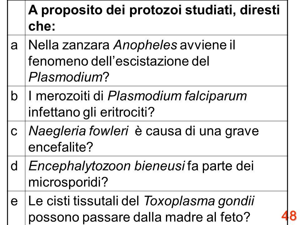 A proposito dei protozoi studiati, diresti che: