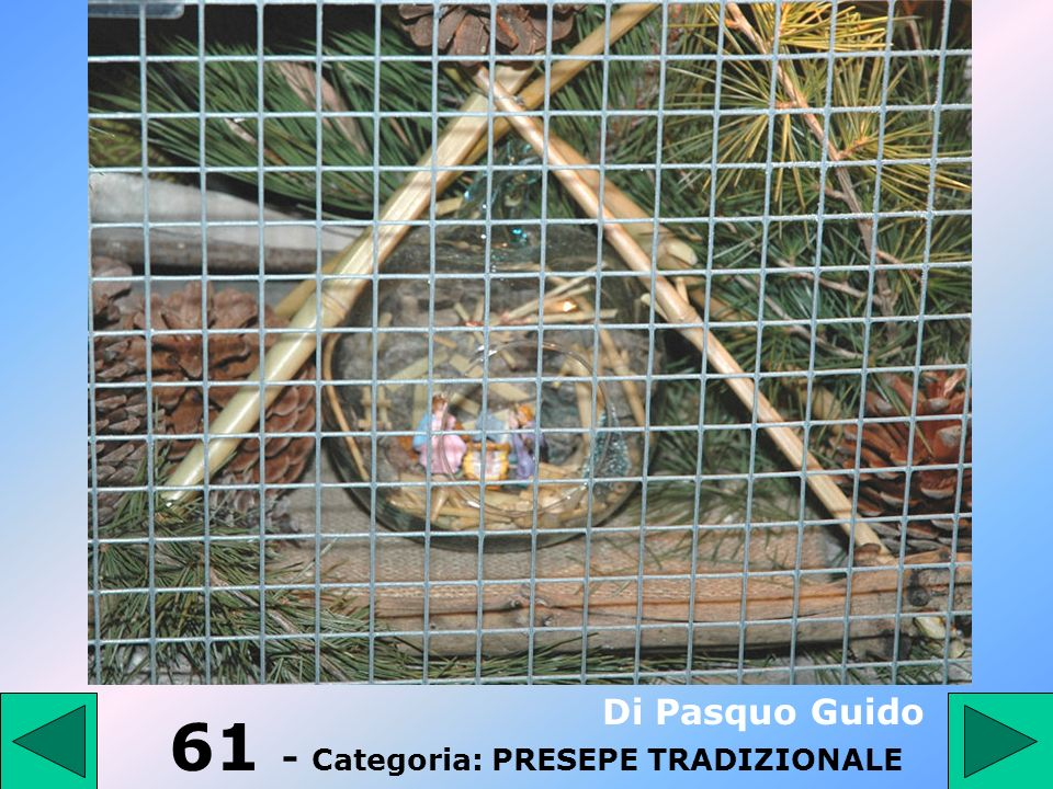 61 - Categoria: PRESEPE TRADIZIONALE