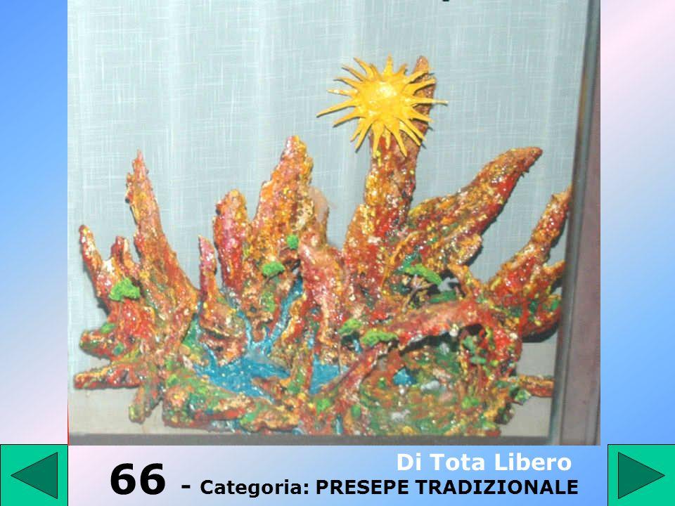 66 - Categoria: PRESEPE TRADIZIONALE