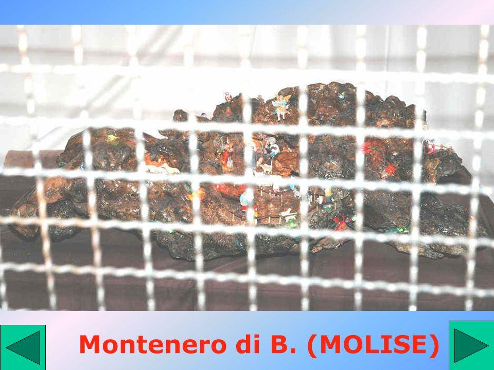 Montenero di B. (MOLISE)