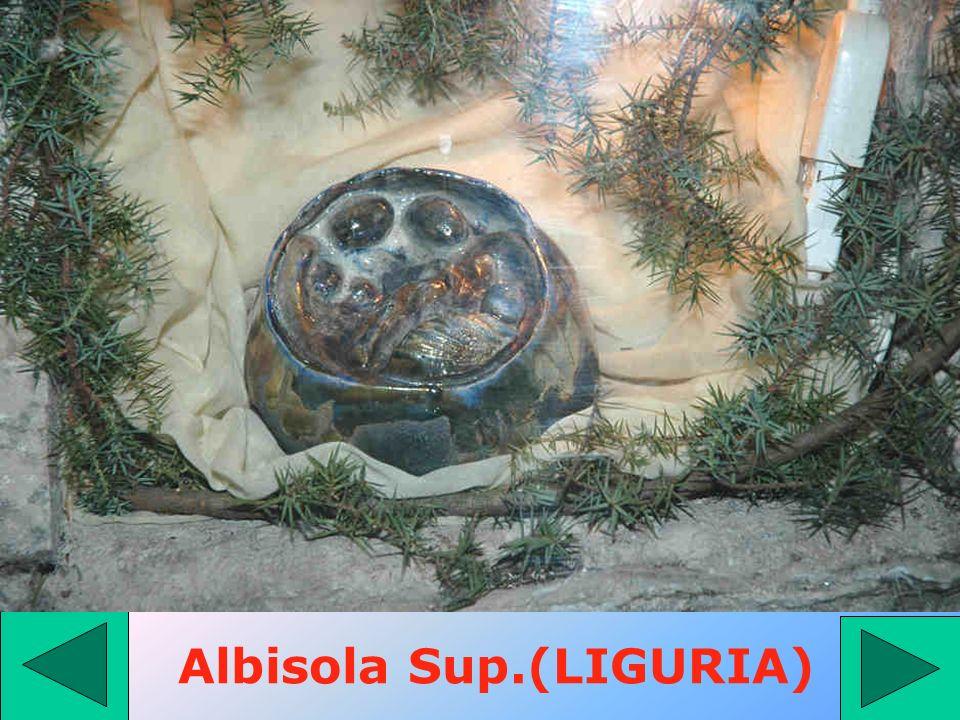 Albisola Sup.(LIGURIA)