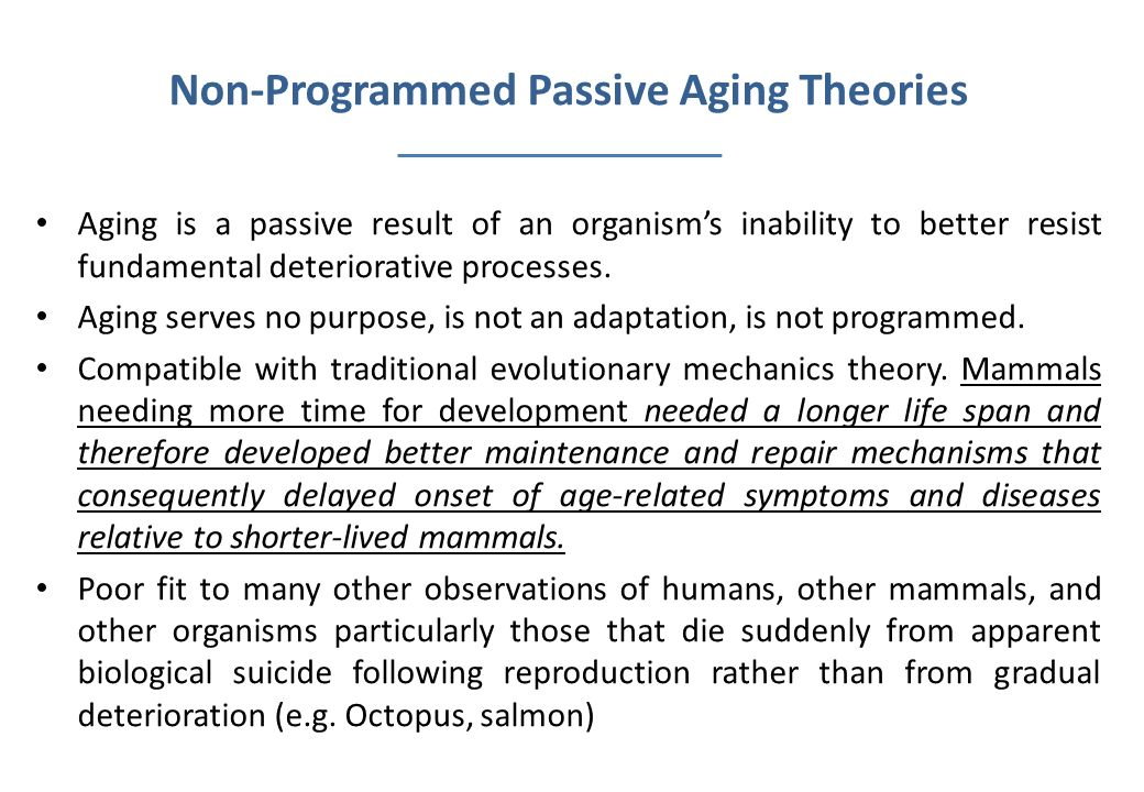 Non-Programmed Passive Aging Theories