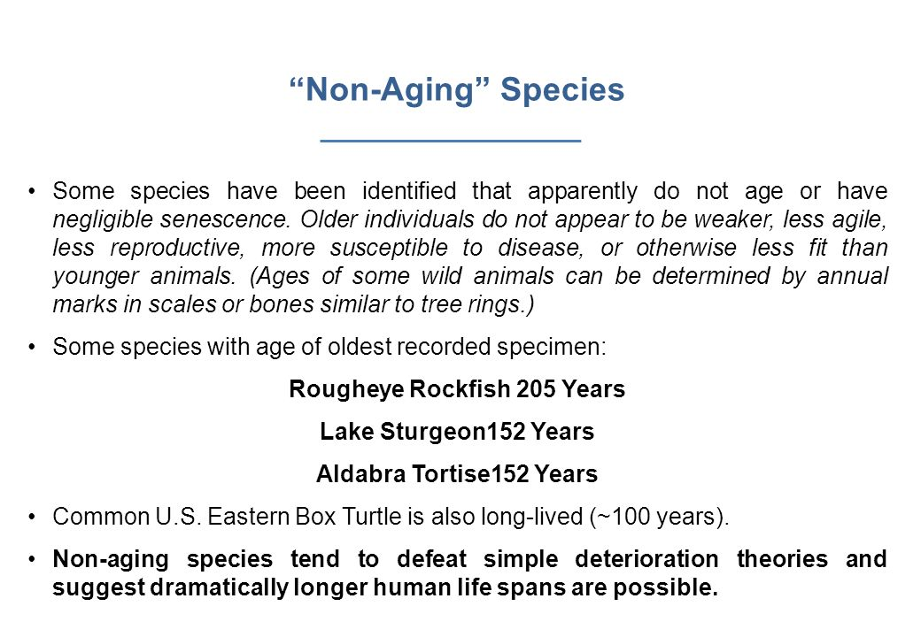 Rougheye Rockfish 205 Years
