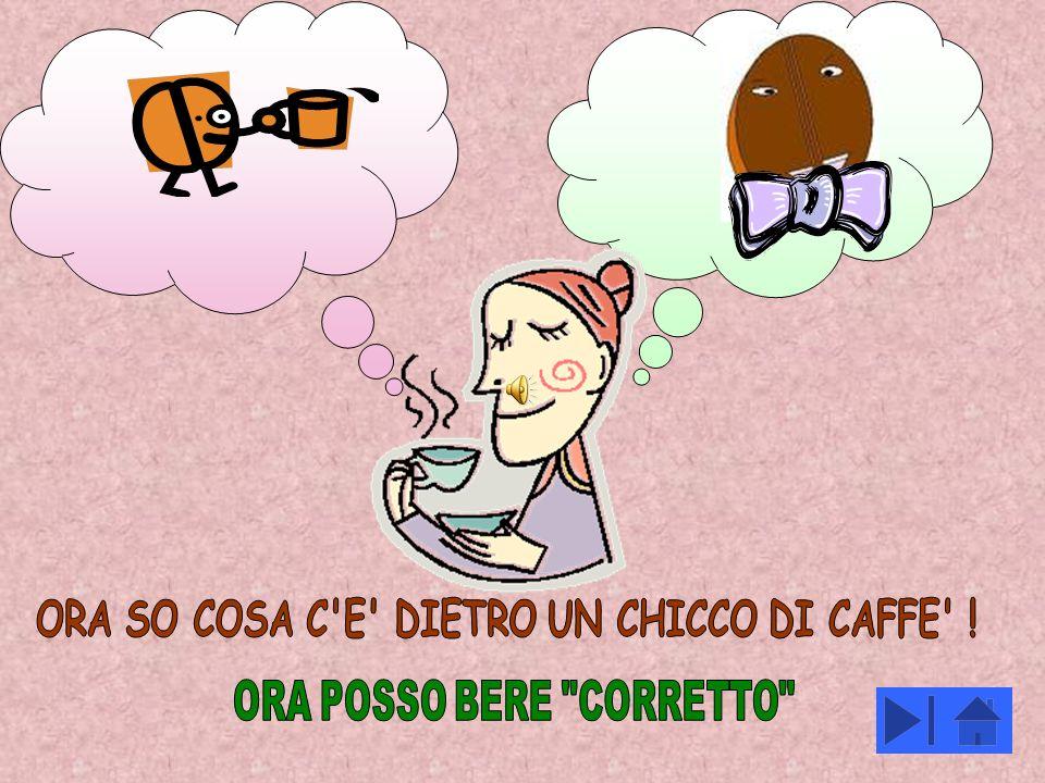 ORA SO COSA C E DIETRO UN CHICCO DI CAFFE !